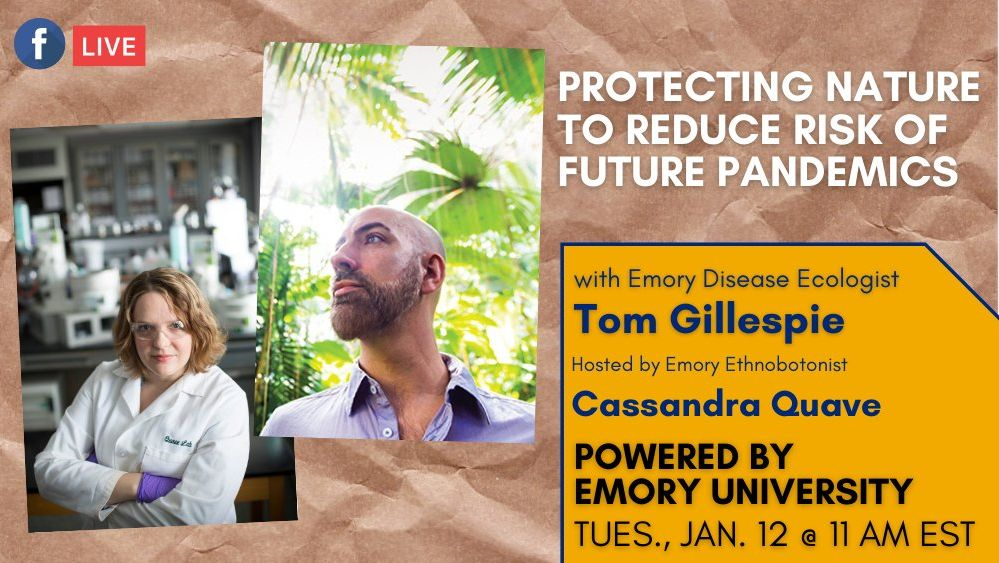 Excited to speak with @BiodiversHealth about how protecting #nature can help to battle future #pandemics . Tune in at 11 am today 🎧🤩🤩🤩