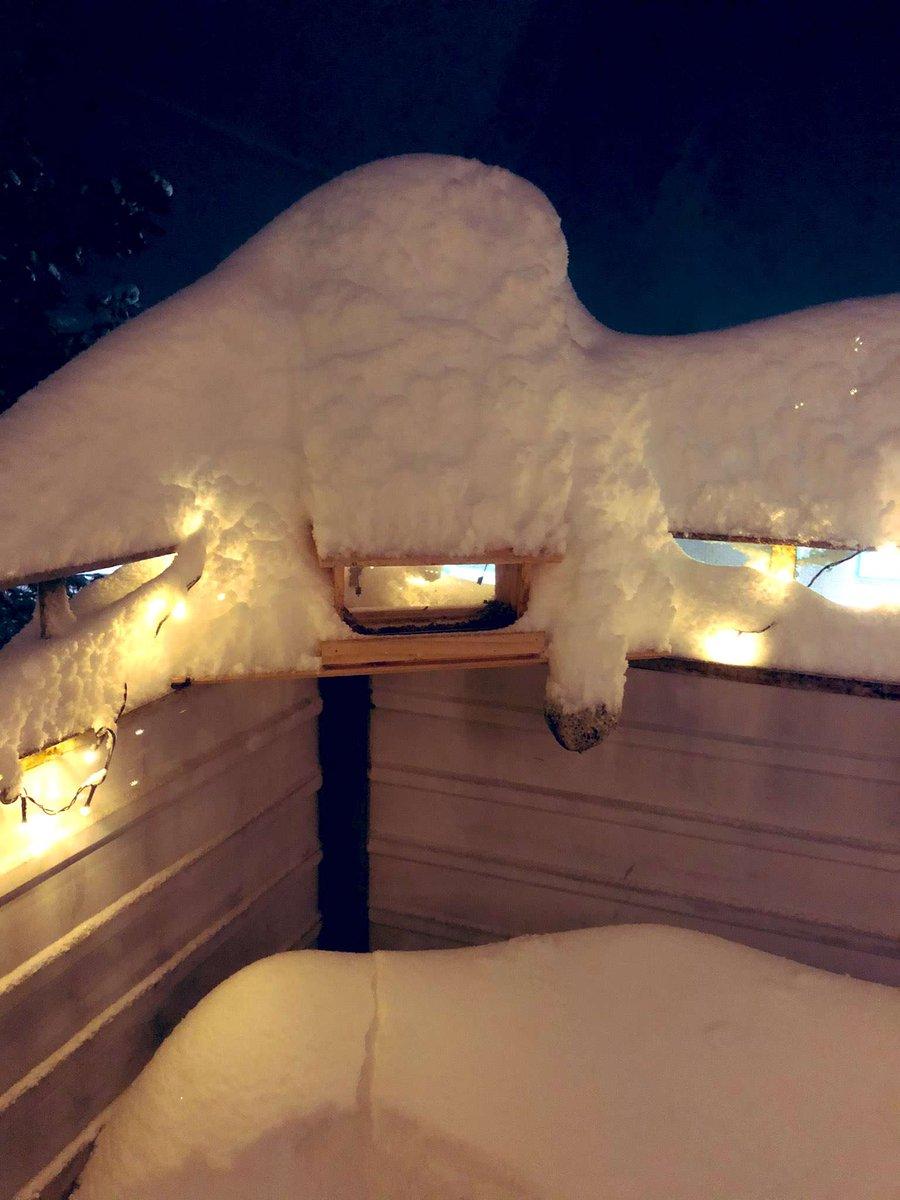 That escalated quickly 🤣🤣❄⚠️#snow #bredbyn #örnsköldsvik https://t.co/4kduMASFK1