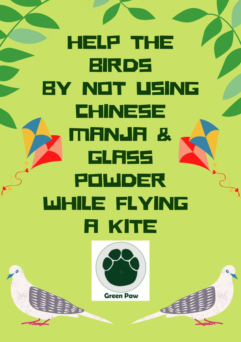 This #festival we @Greenwaveses urge you to use #plasticfree paper #Kites 🪁🪁& say no to Chinese manja. #Chinesemanja puts to risk your own safety,as well as that of #animals & #birds nearby.Their Wings were meant to fly high in the sky, Not for you to cut them down.#SaveBirds