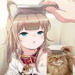 猫が人型になったらこんな感じ?ブラッシングされてる愛猫を描いてみた!