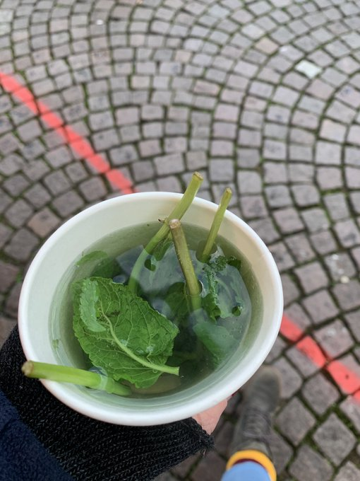 2 pic. It's cold outside. But I thought a cup of fresh mint tea would be nice. There's fresh and there