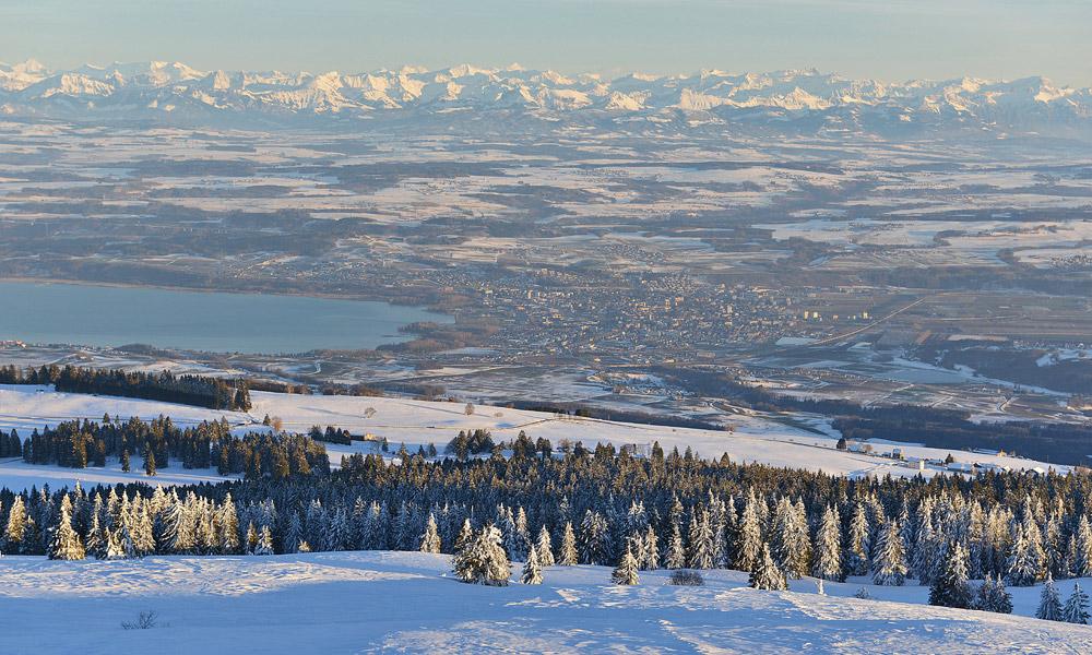 Hoch über dem Mittelland! Winterwandern in #LesRasses bei #SainteCroix! Genuss-Rundweg auf den Jurahöhen oberhalb #Yverdon! Unvergesslich: Der wunderschöne Blick auf die Alpenkette vom Eiger bis zum Mont-Blanc!   @regionduleman @Jura3Lacs  https://t.co/gxlkYDz913 https://t.co/KrCH3IS3HB