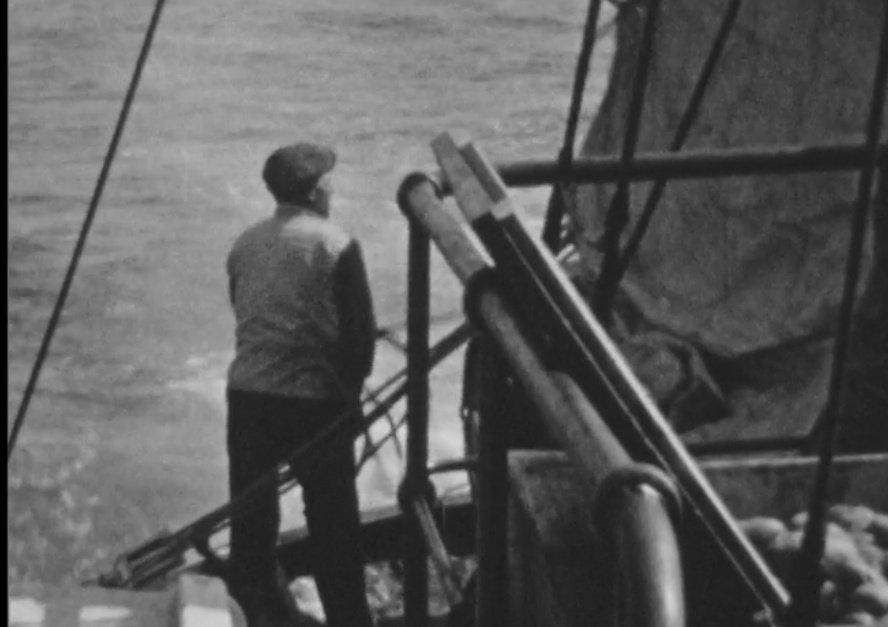 Omdat op haring vissen met een hengel gekkenwerk is, mag filmer Emile Brumsteede mee met het schip Zeemeeuw op haring vissen voor de Schotse kust. Film @BeeldenGeluid #vissen #collectievissen #visserij https://t.co/TJk6jT5OS7 https://t.co/hbPlpVynTE