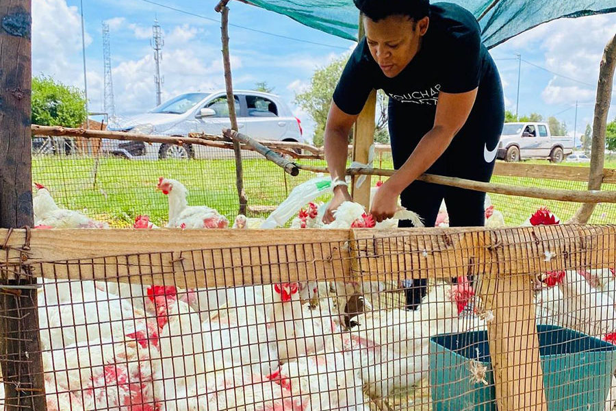 #DownToEarth with @AngieKhumalo. Today we speak to socialite @wabantu_zodwa on her venture into the poultry business. #TheKingsSuite