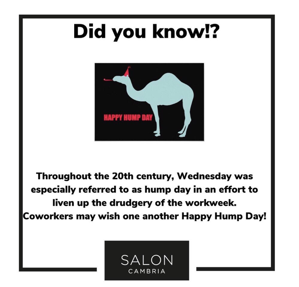 Happy Wednesday! 🐪 🐫    #factoftheday #midweek #wednesday #humpdaywednesday #nearlythere #lockdown #covid19 #college #training #education
