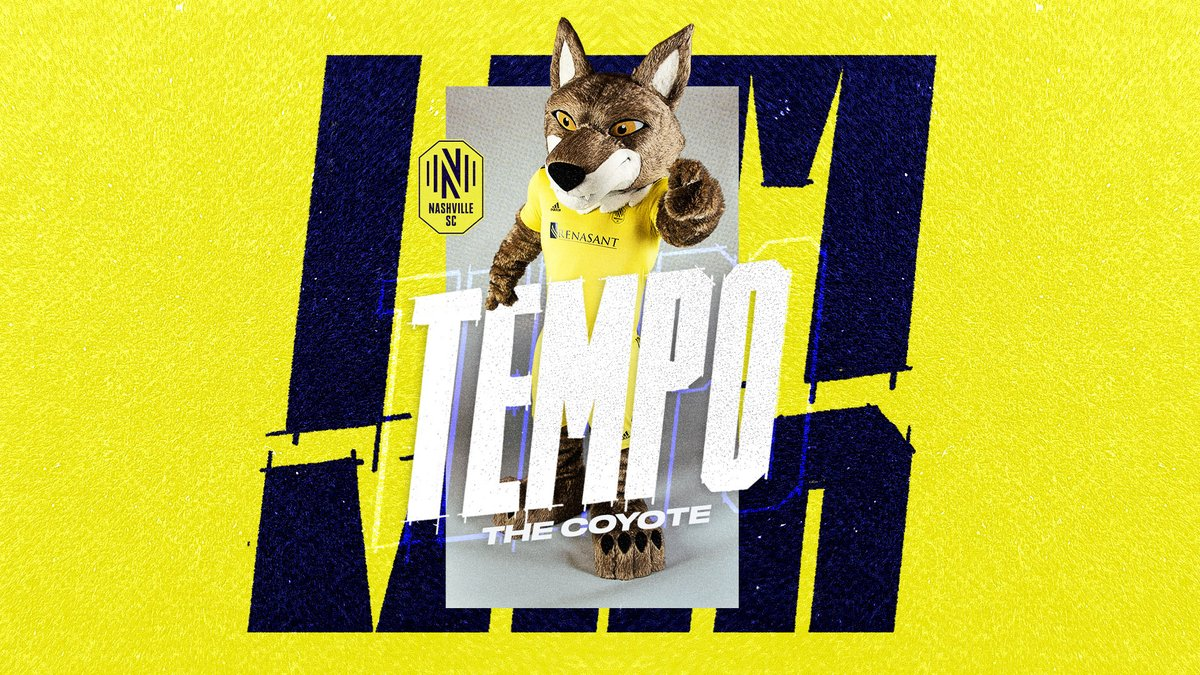 Music City's Coyote is home.  Get to know @TempoNSC.  #EveryoneN |