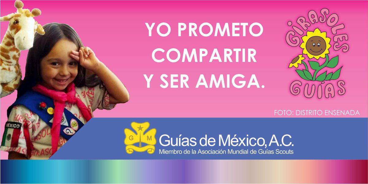 La rama de las Girasoles está destinada para las niñas más pequeñas de la Asociación, pudiendo integrarse a partir de los 4 años de edad.  GIRASOLES 👉   Únete a Guías de México  👉   #SoyGuía #Girasoles #SiempreAlegres
