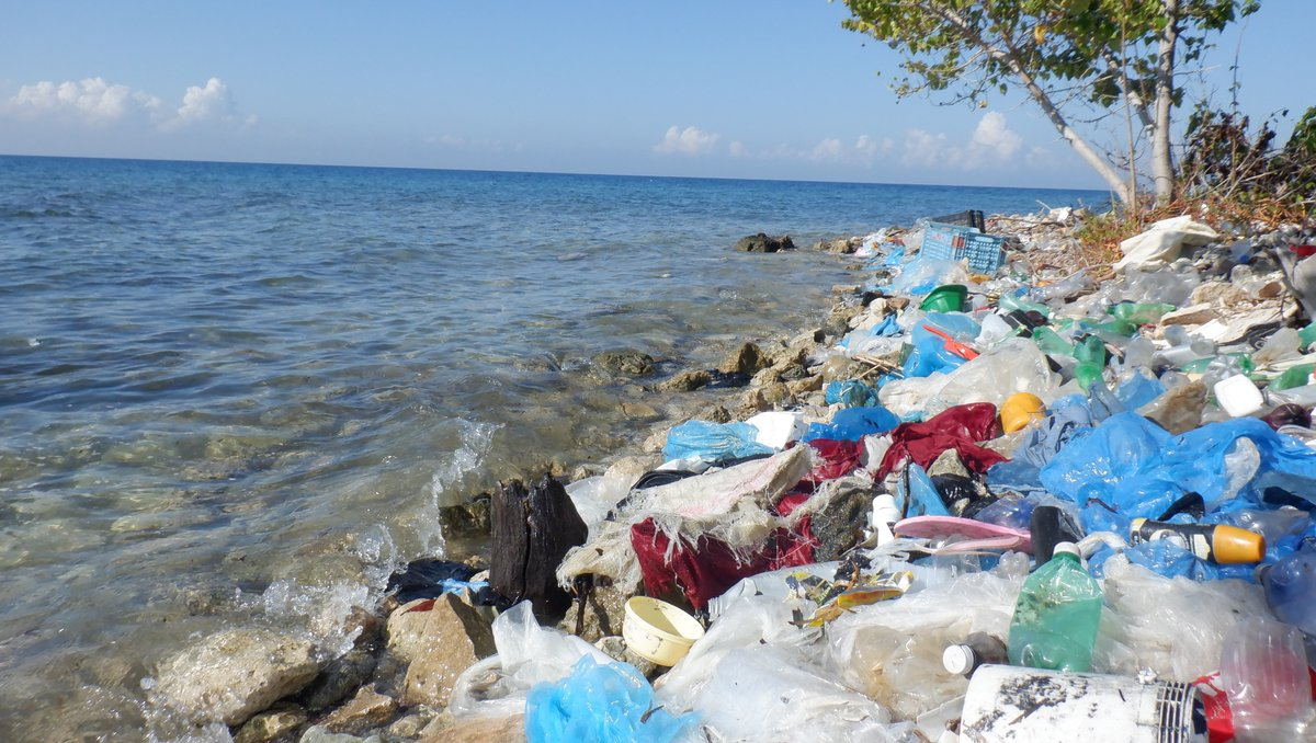 It takes hard work and dedication to create incredible differences like this one!   Our professional cleanup crews recently recovered over 1,770 pounds from Ibo Beach in Haiti.  By refusing single-use plastic, we can make polluted coastlines like this one a thing of the past.⁠