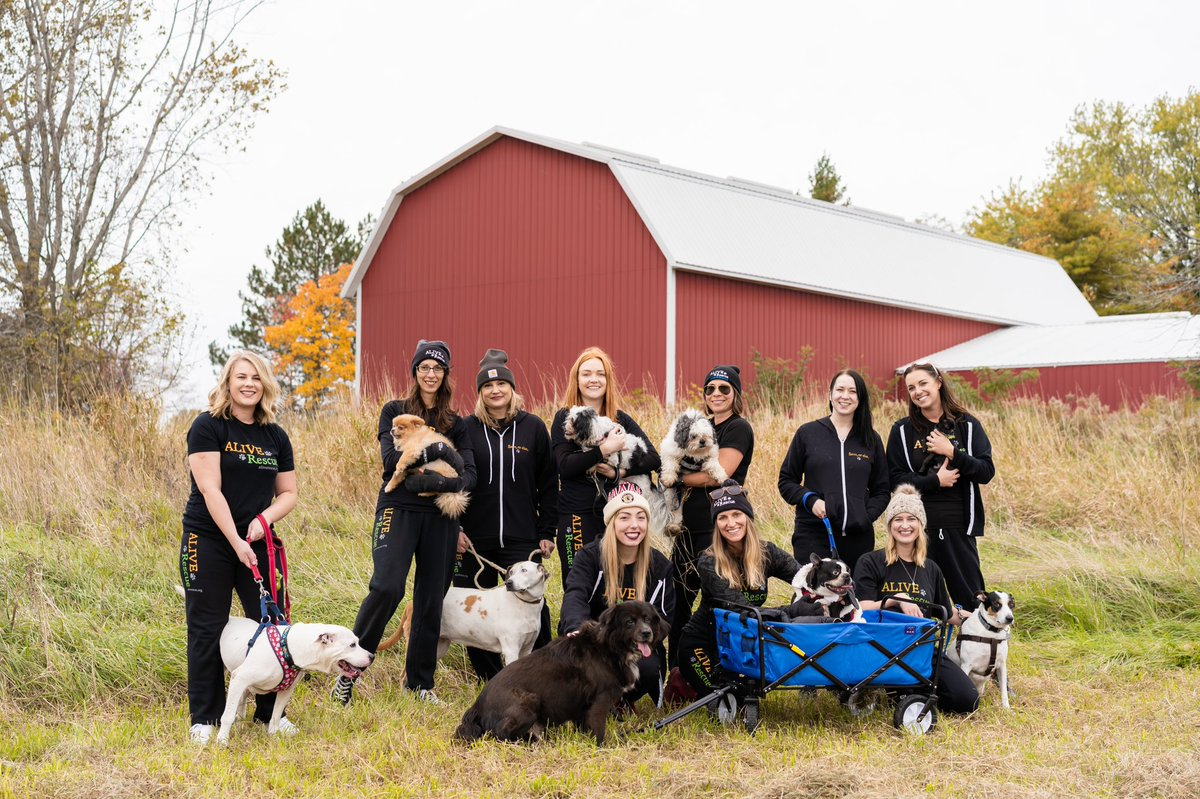 The Big Barn is ALIVE Rescue's no-kill shelter and sanctuary currently under construction in Salem Lakes, Wisconsin.  Sign up for The Big Barn newsletter: stay up-to-date on our progress and be the first to know when we are opening! #BigDreamsBigBarn  https://t.co/dOAZveGjXC https://t.co/m52gtnwSou