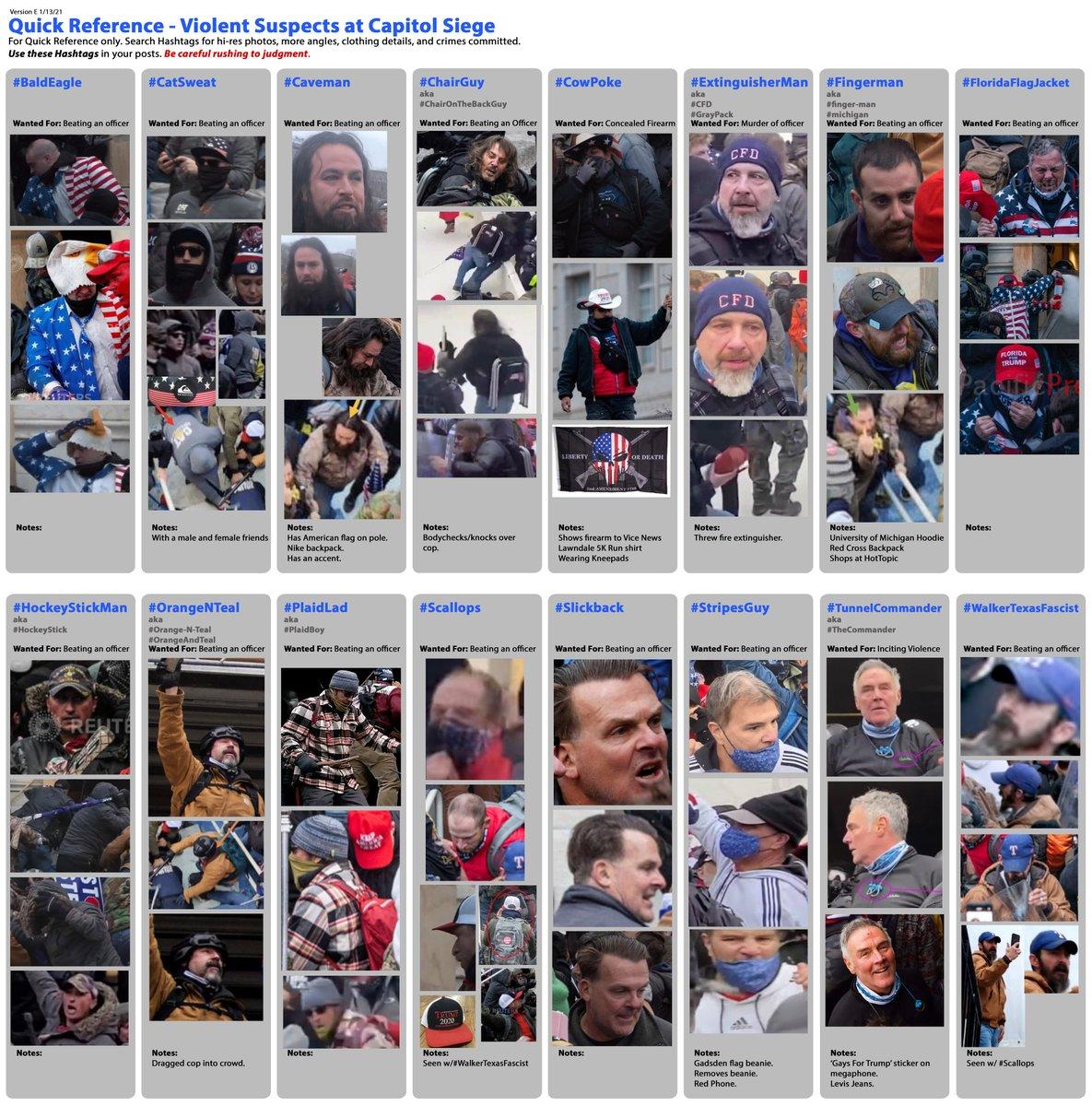 #SeditionHunters @no_nazis_please @beebthesimp Violent Suspects at The Capitol Siege Update E #BaldEagle #CatSweat #Caveman #ChairGuy #CowPoke #Extinguisherman #Fingerman #FloridaFlagJacket #HockeyStickMan #OrangeNTeal #PlaidLad #Scallops #Slickback #StripesGuy #TunnelCommander
