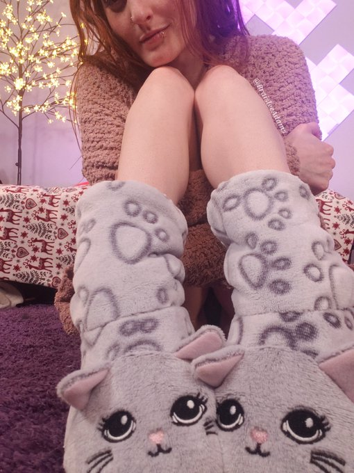 2 pic. Aren't these slippers just the cutest ever?! 😻 https://t.co/M7WWtpF1b0