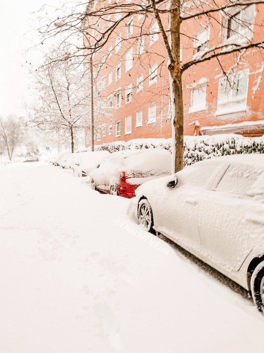 🌨️ Gran nevada en Madrid.  ❄️  ___ #Madrid #MadridNevado #MadridBajoLaNieve #nieve #Filomena #spain #espana #FelizMiercolesATodos #photooftheday #frozenlandscapes #frozen #FelizMiercoles #NevadaEnMadrid #telemadrid #WednesdayMotivation #wednesdaythought