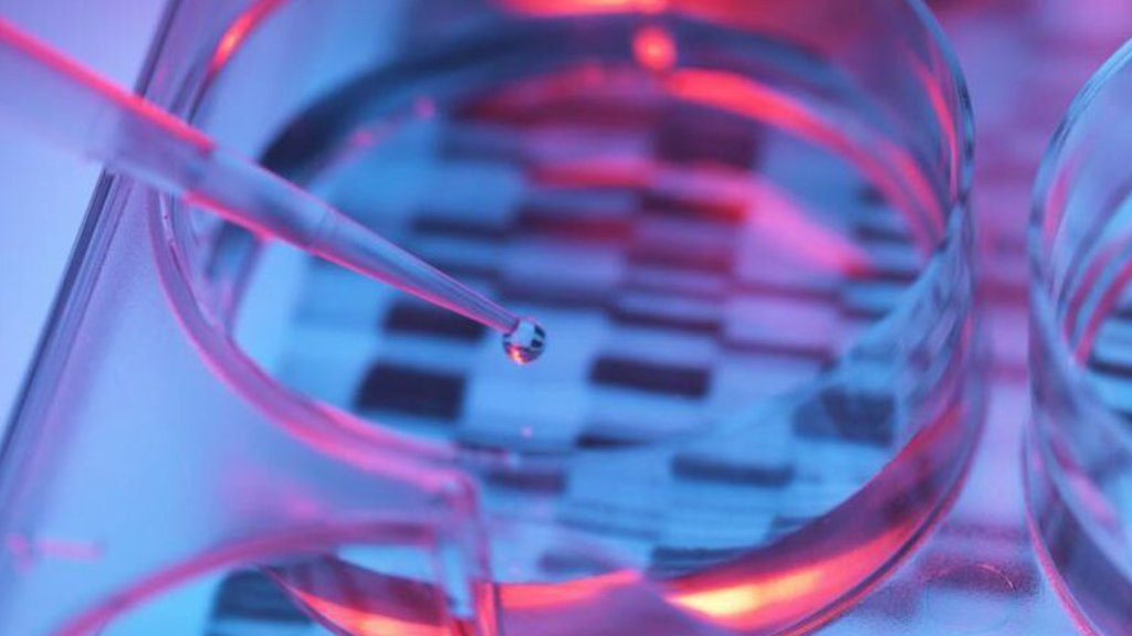When you apply for a life insurance policy, the insurance company will gather information about you—a lot of information. Can these companies get your genetic test results?
