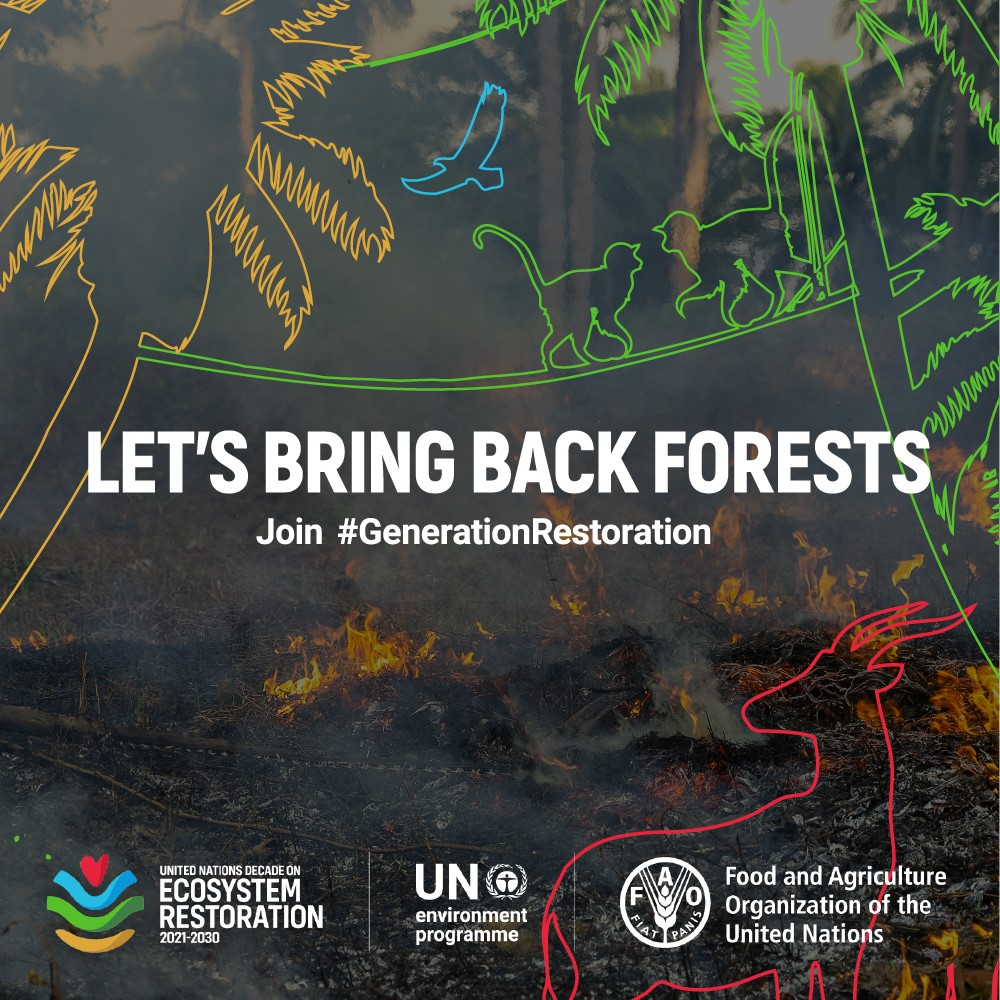 The next 10 years are critical in addressing the climate crisis & saving 1 million species from extinction.  The Decade on Ecosystem Restoration is a rallying call for the protection & revival of ecosystems around the world.   Join #GenerationRestoration: