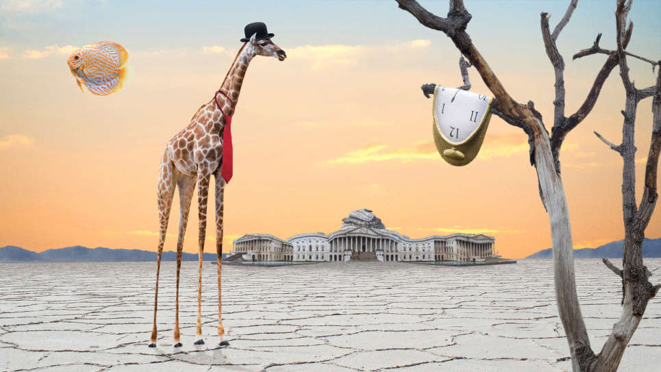 Melting Giraffe Congressman Warns Impeachment Distracting From Surreal Issues
