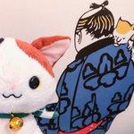 kabukinyantaroのサムネイル画像