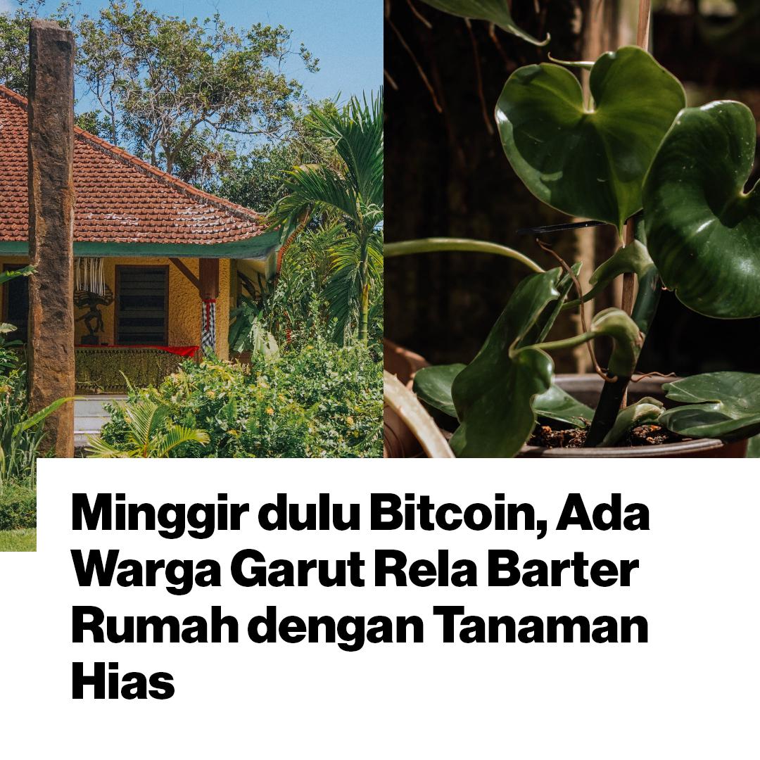 Saking cintanya pada tanaman, lelaki ini mau menukar rumahnya senilai Rp500 juta dengan puluhan tanaman hias.