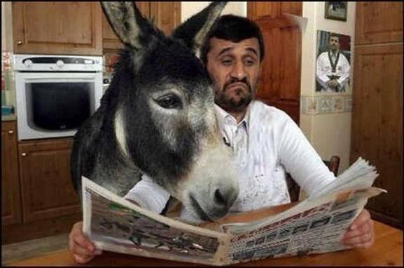 In six words or fewer, write a story about this photo. #sixwordstory #WritingCommunity https://t.co/rcBHJZxaNb