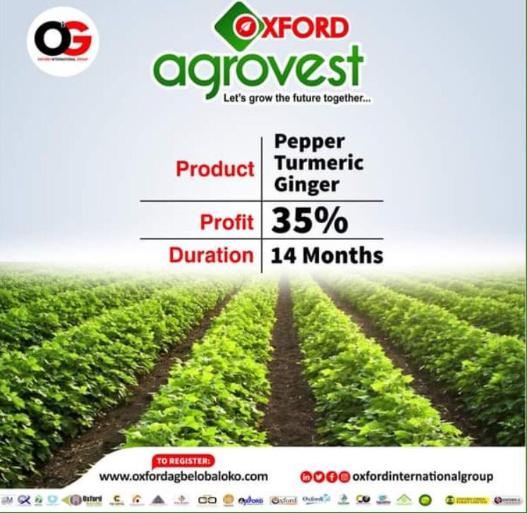 @ashleytisdale Hello if you are looking for the right thing to invest in to make your money work for you OXFORD INTERNATIONAL GROUP has the right investment plan for you with the best ROI in the market . To know more feel free to call OLA on 07032126985.