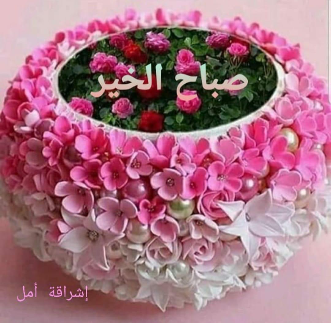 @naufaldaou @elissakh صباح الخير والنور والسرور الوسه كل يعدي يالوس