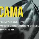 Image for the Tweet beginning: ATACAMA – La Nouveauté #SOJA