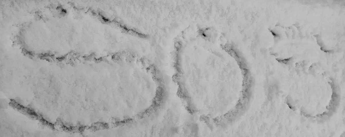 It's a #snow ❄️ day @Sostraveluk style!! #Staysafe everyone 🤗   #ThursdayThoughts #snowday #snowing #blogger #newcastle #northeastengland #Snowing #footprint #sos #sostraveluk