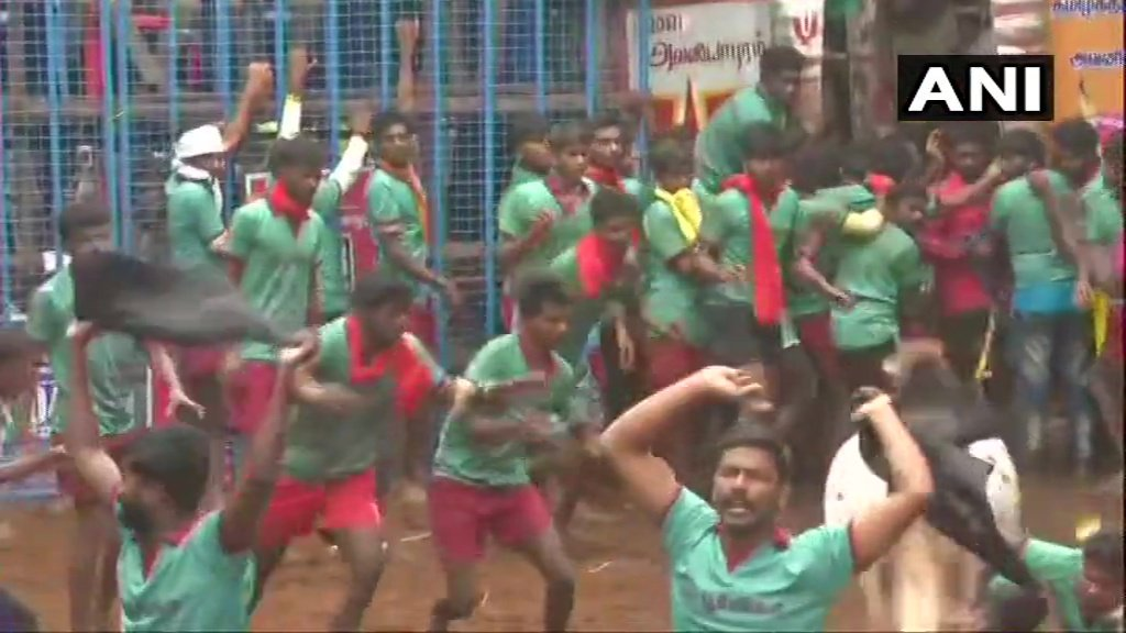 Tamil Nadu: Two bull tamers detained by police for waving black flags and shouting slogans against Centre's farm laws during #Jallikattu event in Madurai