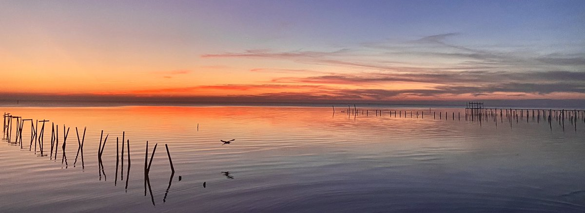 Top #Photography story: @kelly_dubs: 'Peace 🕊 Mobile Bay, Al #Sunrise #Nature #Photography #Clouds #SaltLife @spann @RealSaltLife @NWSMobile @ThomasGeboyWX @michaelwhitewx @Kelly_WPMI @JohnnyParker012 @mynbc15 @morgana… , see more