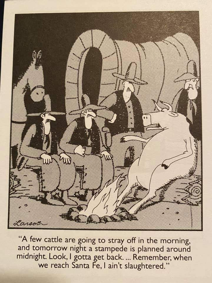 Funny, but not. You think there aren't some deals being made for our hides? #funny #thursdaymorning #sheeple