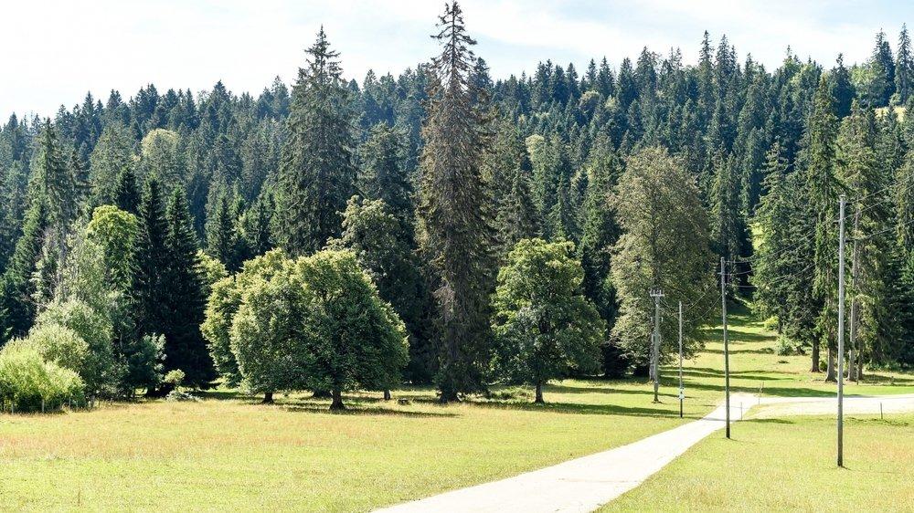 Jura: les Chemins du bio élargissent leur offre de randonnées https://t.co/LST7JOTX9g https://t.co/4F2ztATSCO