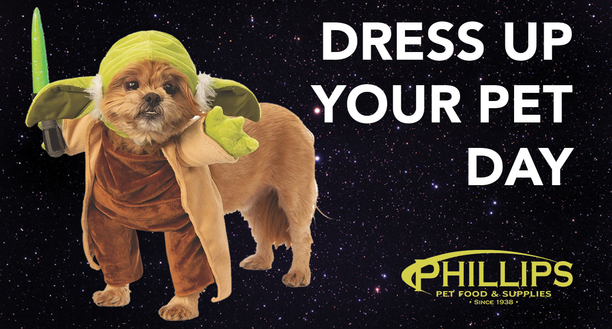 Phillips Pet Food And Supplies - Phillips Pet Food ...