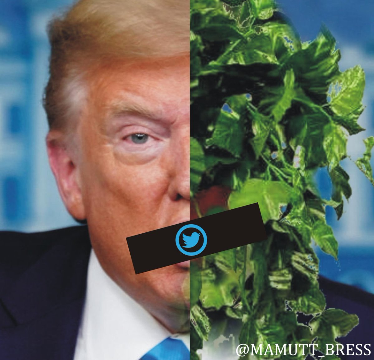 Tweeter da de baja las cuentas de Donald Trump y de POTUS, por posibles incitaciones a la violencia. #ImpeachmentDay