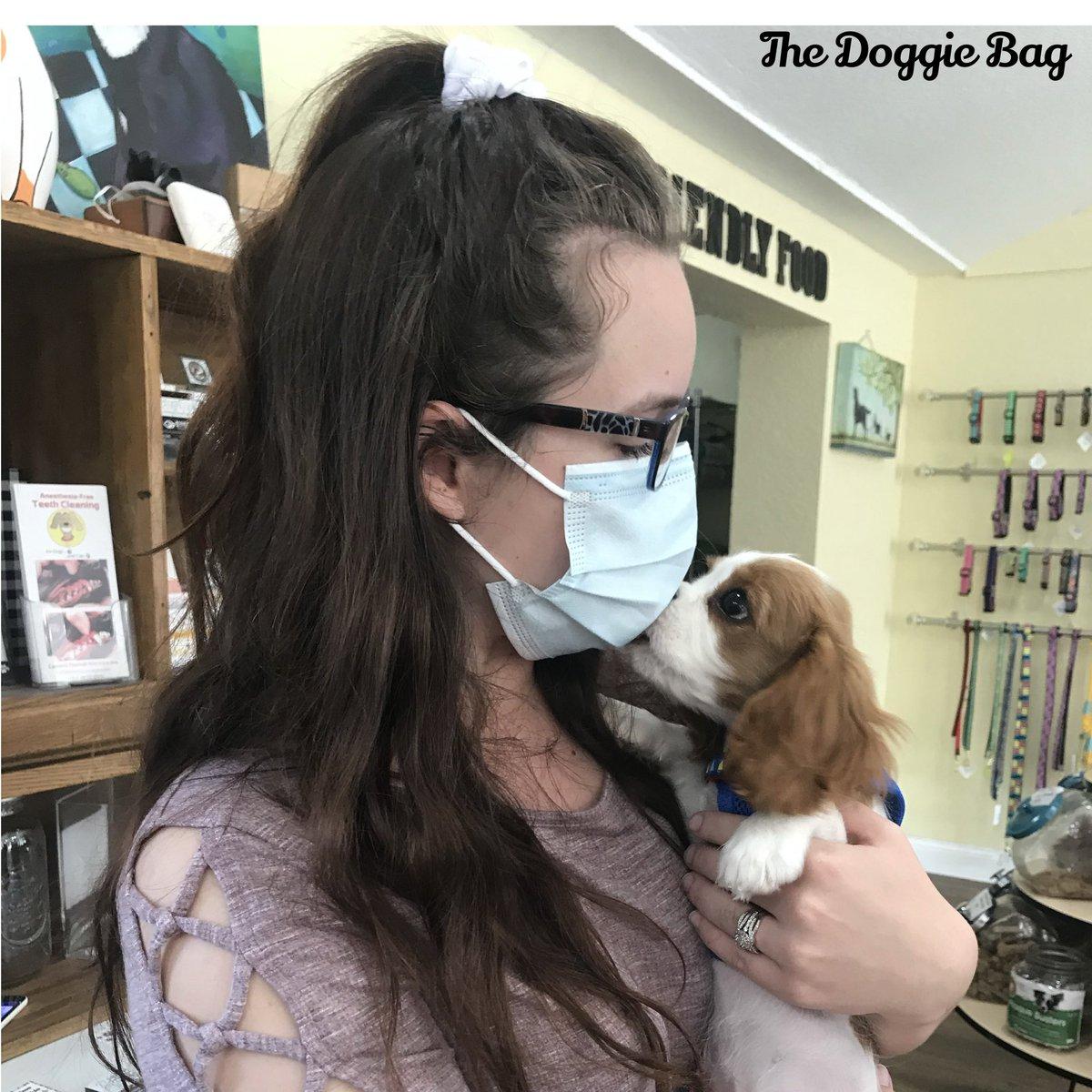 Masks can't stop Puppy Kisses @doggiebagboutique 😚  #puppylove #puppylife #puppy #cavalierkingcharlesspaniel #kingcharlescavalier #cavalier #thedoggiebag #petboutique #happyplace #dogsoflakeland #dogmomsoflkld #lakelandflorida #lakelandfl