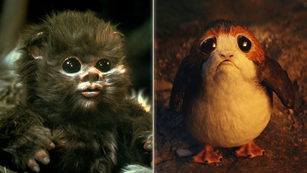 Adorable eyes and so much fluff, but you can only pick one. Which do you choose, porg or Ewok?