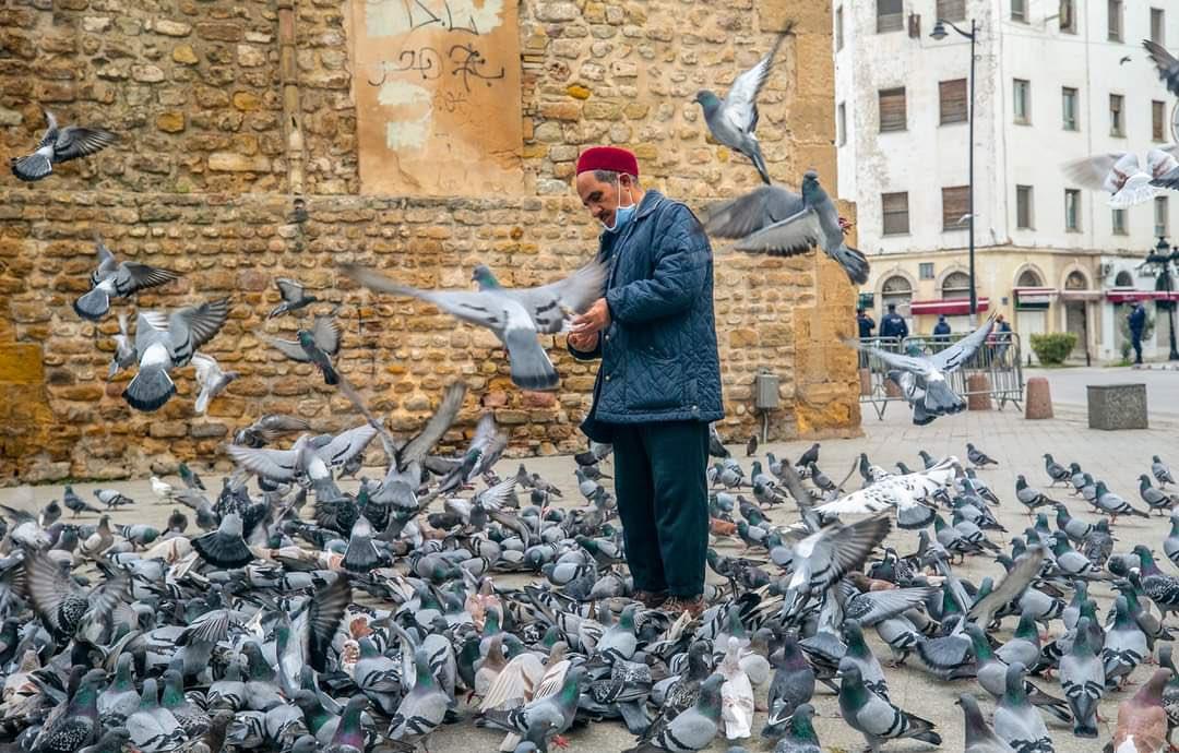 في مثل هذا اليوم قبل ١٠سنوات،سقط أوّل زعيم عربي وفرّ #زين_العابدين_بن_علي من #تونس .بدأ الربيع العربي مع معركة التونسيين وثورة الياسمين التي اختُطفت ولم تحقق أهدافها.وبغضّ النظر عن النتيجة،التغيير بحاجة إلى وقت طويل حتى ينتصر مطلق أي شعب على أعداء الداخل والخارج.#الثورة_التونسية https://t.co/HtygKEu2Z3
