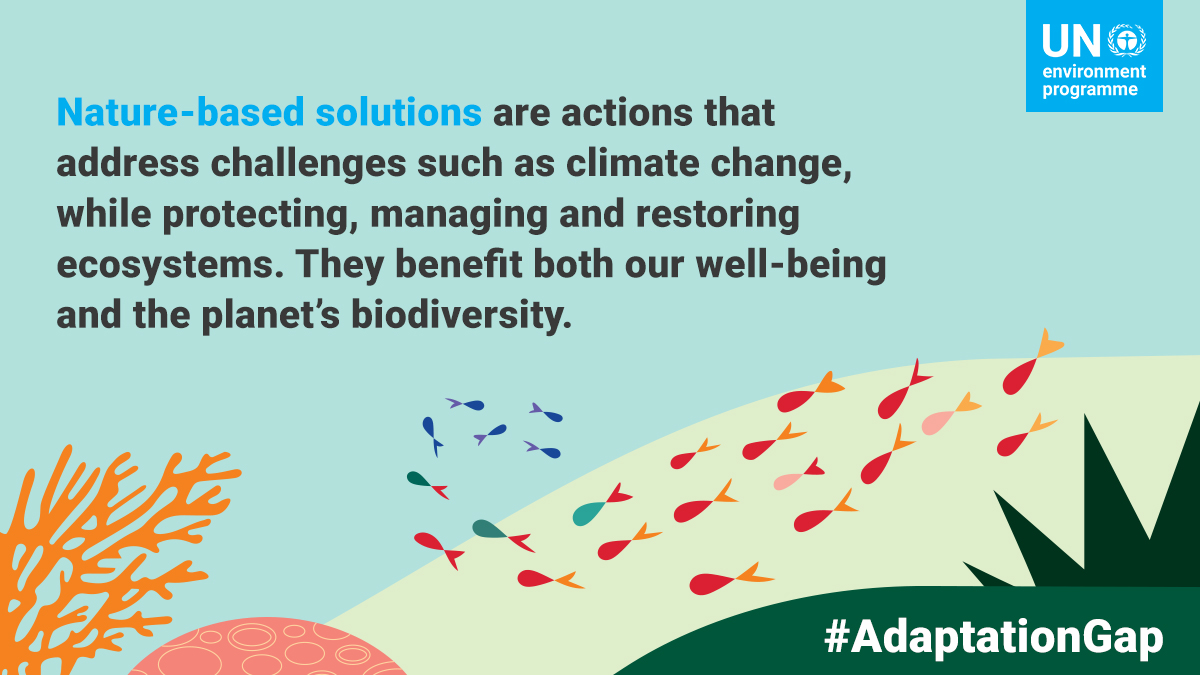 Nature-based solutions are a win-win-win for  People 🙋🏿‍♀️🙋🏼‍♂️🙋🏾‍♂️🙋🏻‍♀️ The planet🌏🌍🌎 Our economies 💼🏦  Learn about their critical role in the push to close the #AdaptationGap:  #ForNature