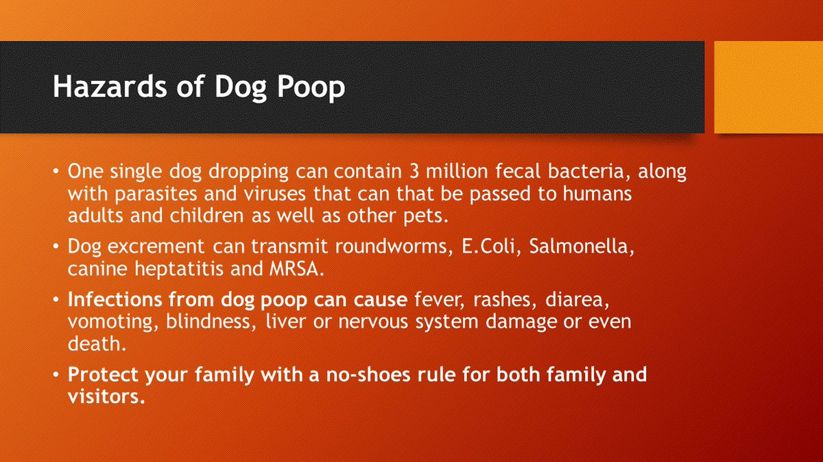 Dog excrement can transmit MRSA and Salmonella. #shoesoffatthedoor #shoesoffpolicy #dogpoop #dogs #bacteria #germs #infectionprevention #noshoesrule #noshoesinthehouse #health