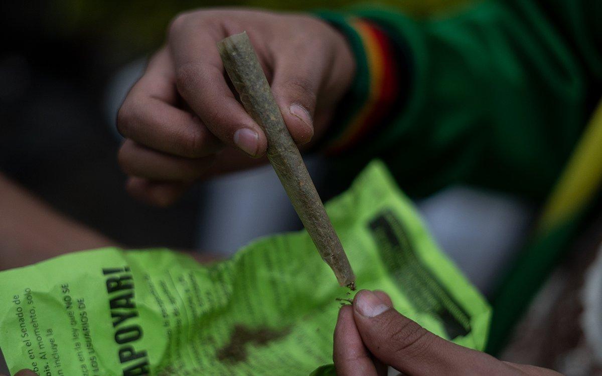 #AlianzaDeMedios Este martes 12 de enero fue publicado en el Diario Oficial de la Federación el reglamento de la Ley General de Salud para la producción, investigación y uso medicinal de la marihuana y sus derivados.  Por @PdPagina / @Maria_Efemere 📸  https://t.co/8MpZnnoypO https://t.co/YXe4L8M5Ll