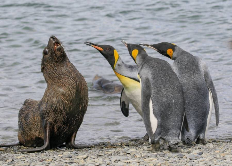 In six words or fewer, write a story about this photo. #sixwordstory #WritingCommunity https://t.co/Ijm3FmhHgx