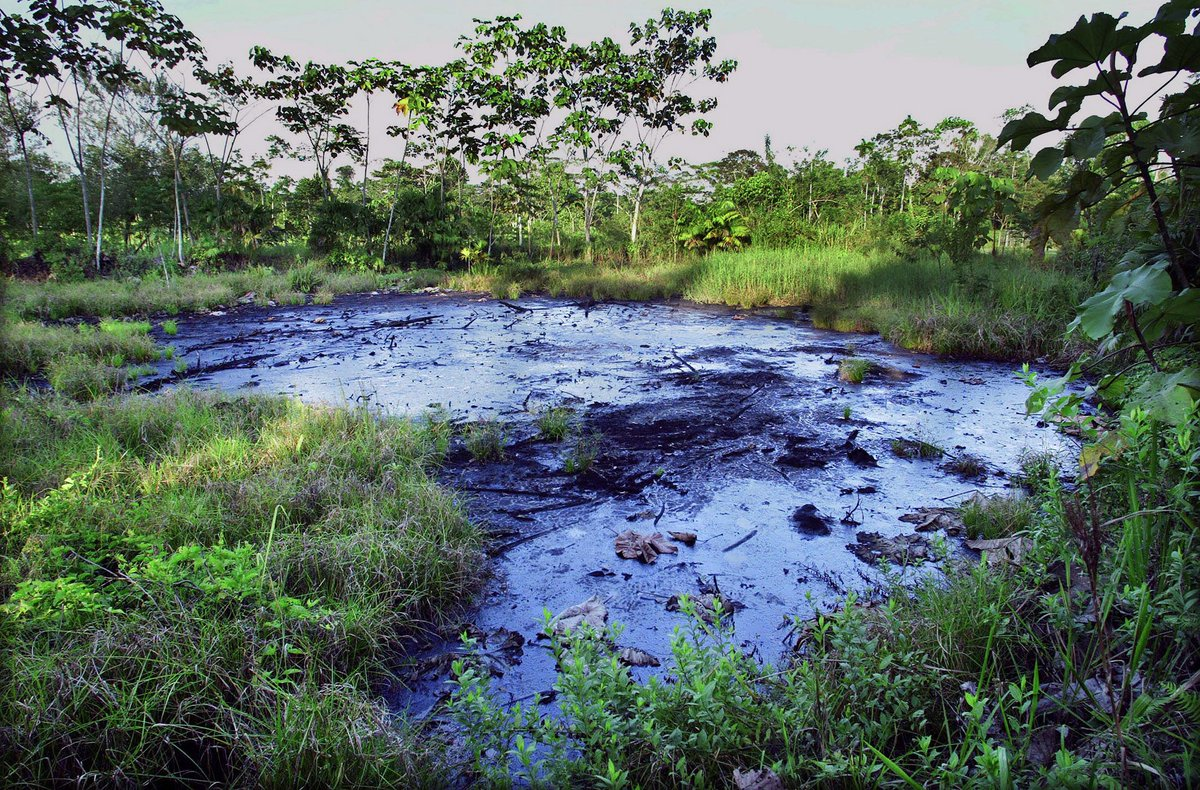 Some of the 1,000 toxic waste pits @Chevron abandoned in Ecuador's Amazon. The pits decimated Indigenous groups and caused an epidemic of cancer that has killed thousands.  See @VICE video for background: