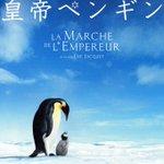 Image for the Tweet beginning: 🔘 『#皇帝ペンギン』(2005)フランス 監督/ #リュック・ジャケ 撮影/#ロラン・シャレ #ジェローム・メゾン 南極で皇帝ペンギンの生態を追ったドキュメンタリー作品。生命の強さを感じる 【2021年➡︎37本】 #STAYHOME #映画鑑賞録(1/15) #映画好きと繋がりたい #映画好きな人と繋がりたい