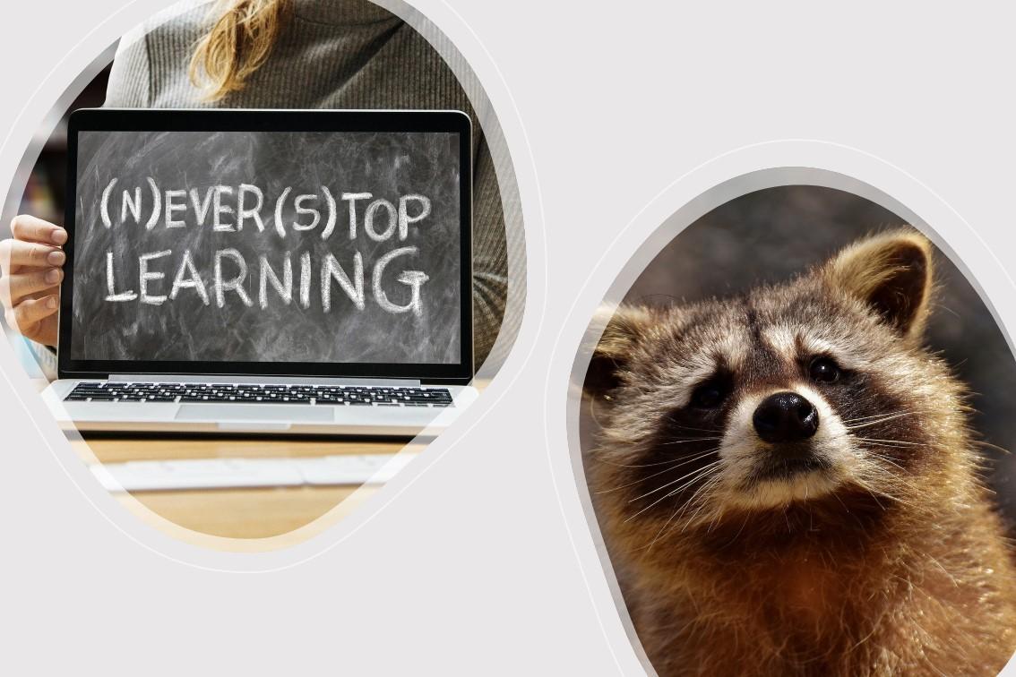 test Twitter Media - Nudíte se? Nepořizujte si medvídka mývala (jak radí klasik), anóbrž se zúčastněte některého z online seminářů @CAK_cz! Přehled o obsahu nejbližších čtyř, samozřejmě i s přihláškou, získáte v #AdvokátníDeník: https://t.co/ReWVpqDiLe https://t.co/LYyfgZ57Qx