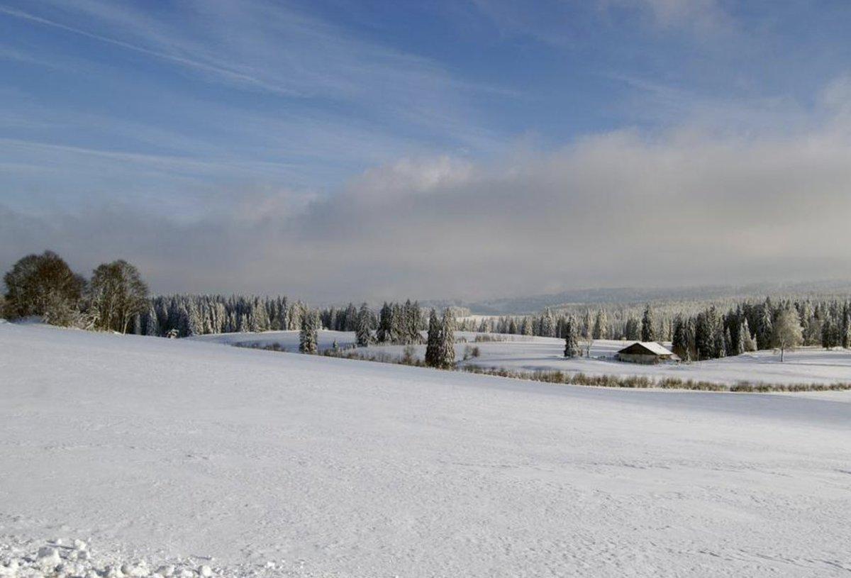 Diese weite weisse Natur! Die #Freiberge mit ihren Weiden und Tannenwäldern! Ein 3km langer und markierter Winterwander-Rundweg führt von #LesBreleux durch diese Postkartenlandschaft! @Jura3Lacs @CantonduJura  @SchweizMobil-Tipp: https://t.co/kauKTut4oh https://t.co/y1iNQZO8fW