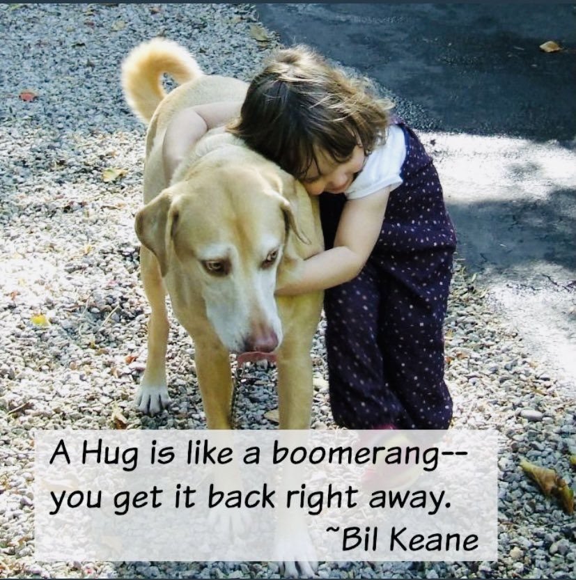 A hug is like a boomerang, you get it back right away. #GoodMorning #Quotes #Motivation #Hugs #GoodFriday #FridayThoughts #FridayFeeling