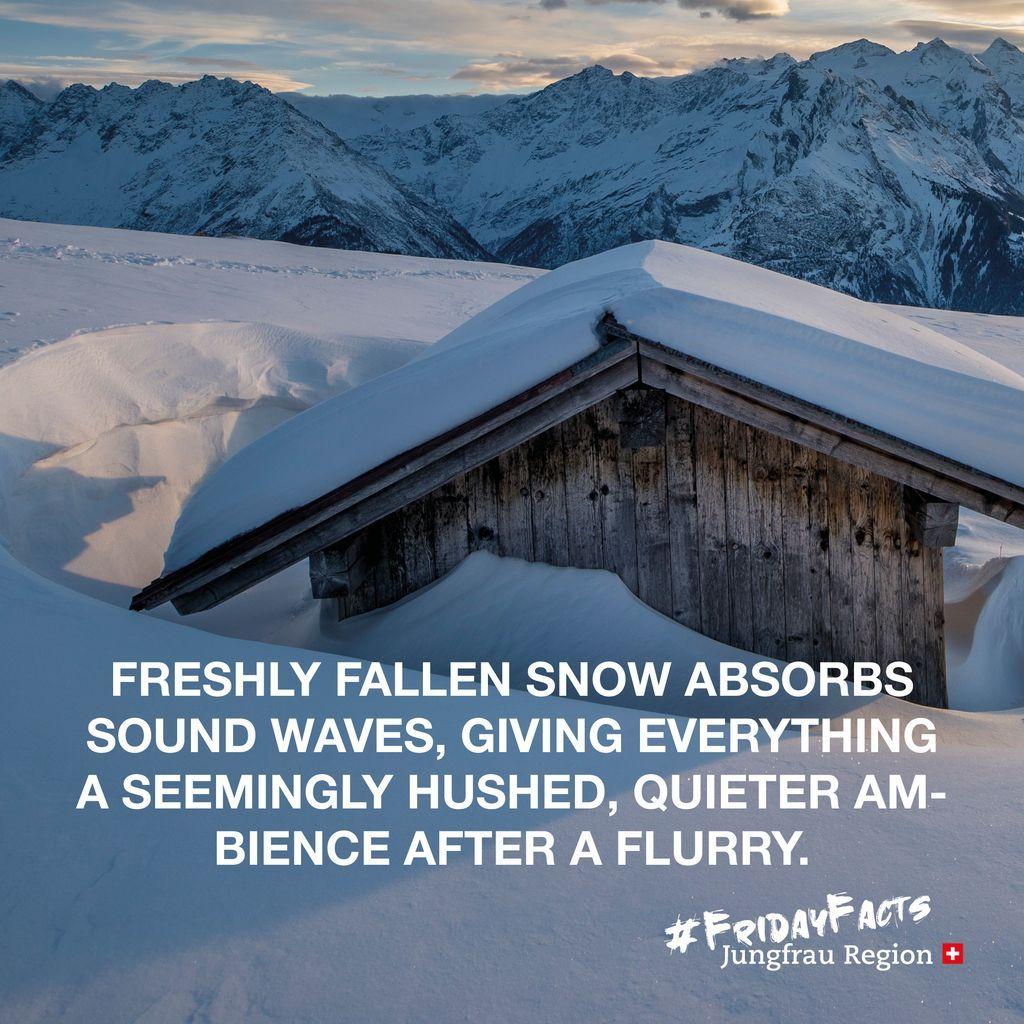 Did you know? 💡⠀ ⠀ #FridayFact⠀ ⠀ @madeinbern | @MySwitzerland_e ⠀ #Snow #sound #soundwaves #silence #jungfrauregion #inLOVEwithSWITZERLAND #switzerland