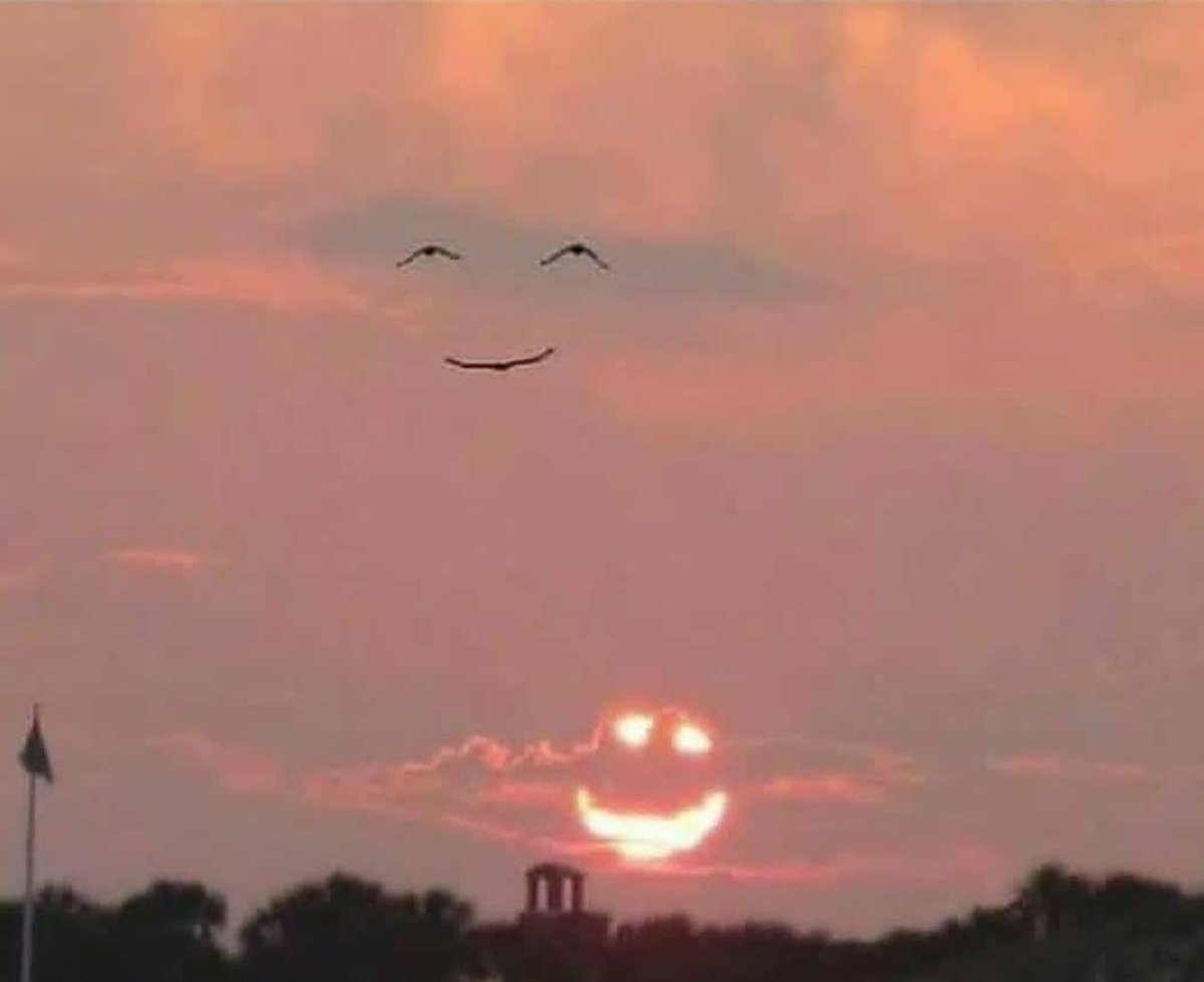 When the sun smiles and the birds smile back 😍