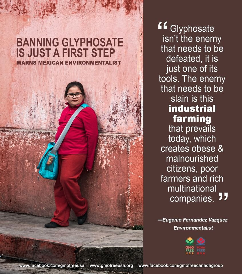 Mexico Gives Bayer-Monsanto the One-Two Punch: Mexico's Diario Oficial de la Federación, the main official government publication in Mexico, published a decree that the country will be phasing out glyphosate use by 2023. (cont.) https://t.co/YiUNjm8z9I