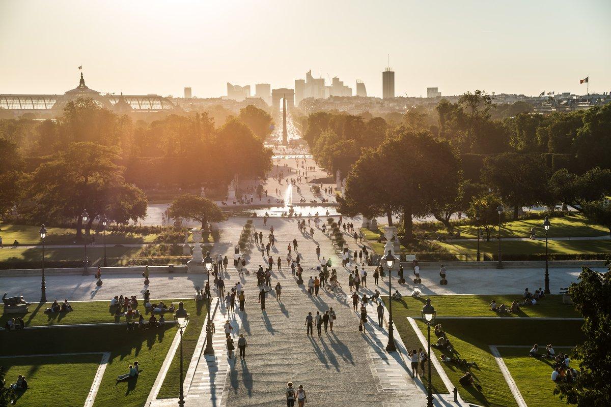 #TousMécènes des Tuileries 🌳  L'objectif est atteint ! Grâce à la mobilisation de 4 500 donateurs, le musée du #Louvre a rassemblé 1 million d'euros pour restaurer la Grande Allée des #Tuileries. 🙏  Consultez notre communiqué 👉