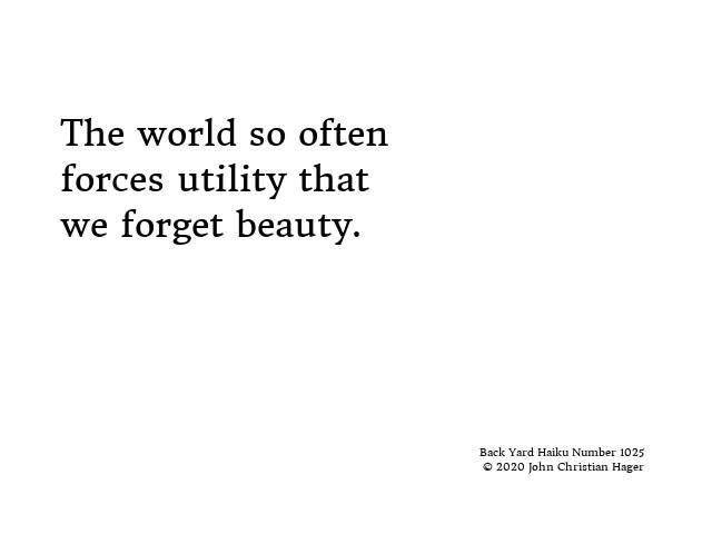 #haiku #writing #poetry #world #often #forces #utility #forget #beauty #BackYardHaiku
