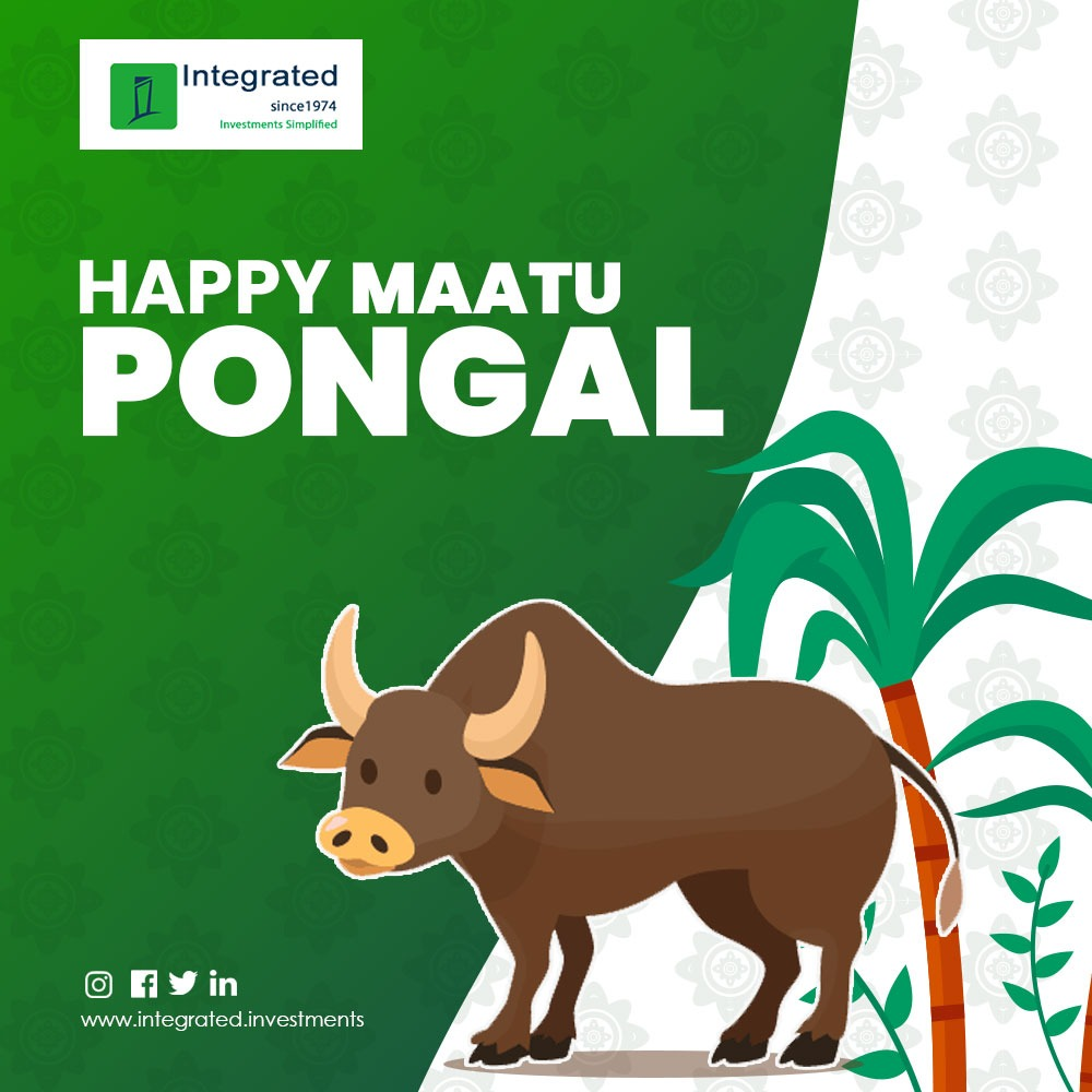 Just like the bull market, May you reach higher goals each day. Wishing you all a very Happy Maatu Pongal.!  #pongalfestival #maatupongal #festivemode #festival #pongalcelebration #festiveseason #financialgoals #financialsolutions #integratedenterprises